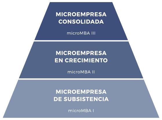 micromba-actec-metodologia-esquema-niveles-programa