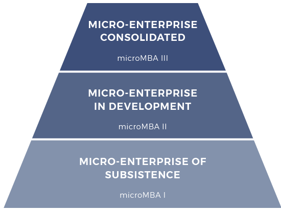 micromba-actec-methodology-scheme-levels-program